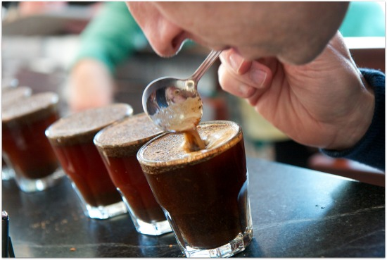 An idiot's guide to properly tasting drinks