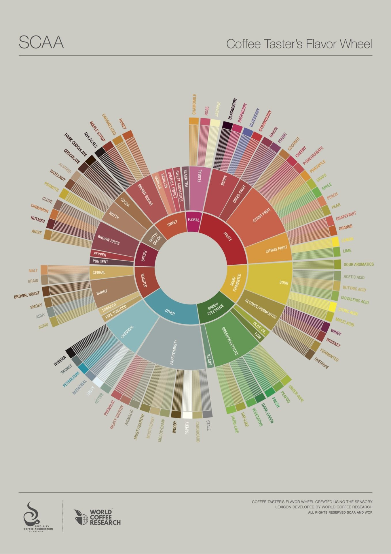 New coffee flavors? What's a coffee flavor wheel?