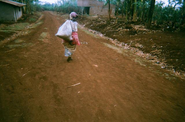 coffee farmers in Uganda carrying coffee