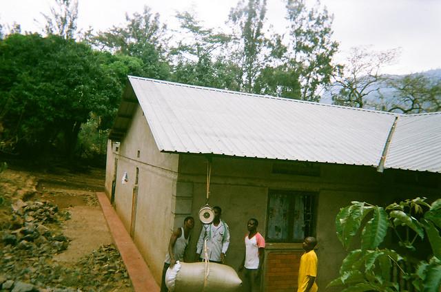 coffee farmers in Uganda weighing coffee