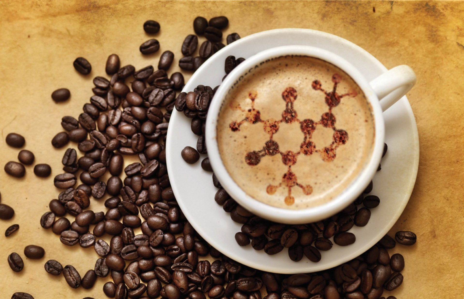Craft coffee science