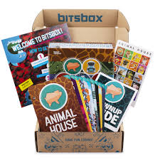 amazon subscription box Bitsbox
